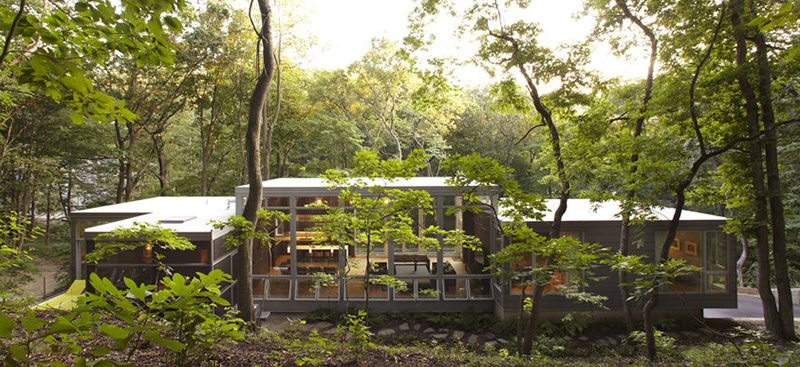 Wooded area home with multiple Marvin Windows and Doors