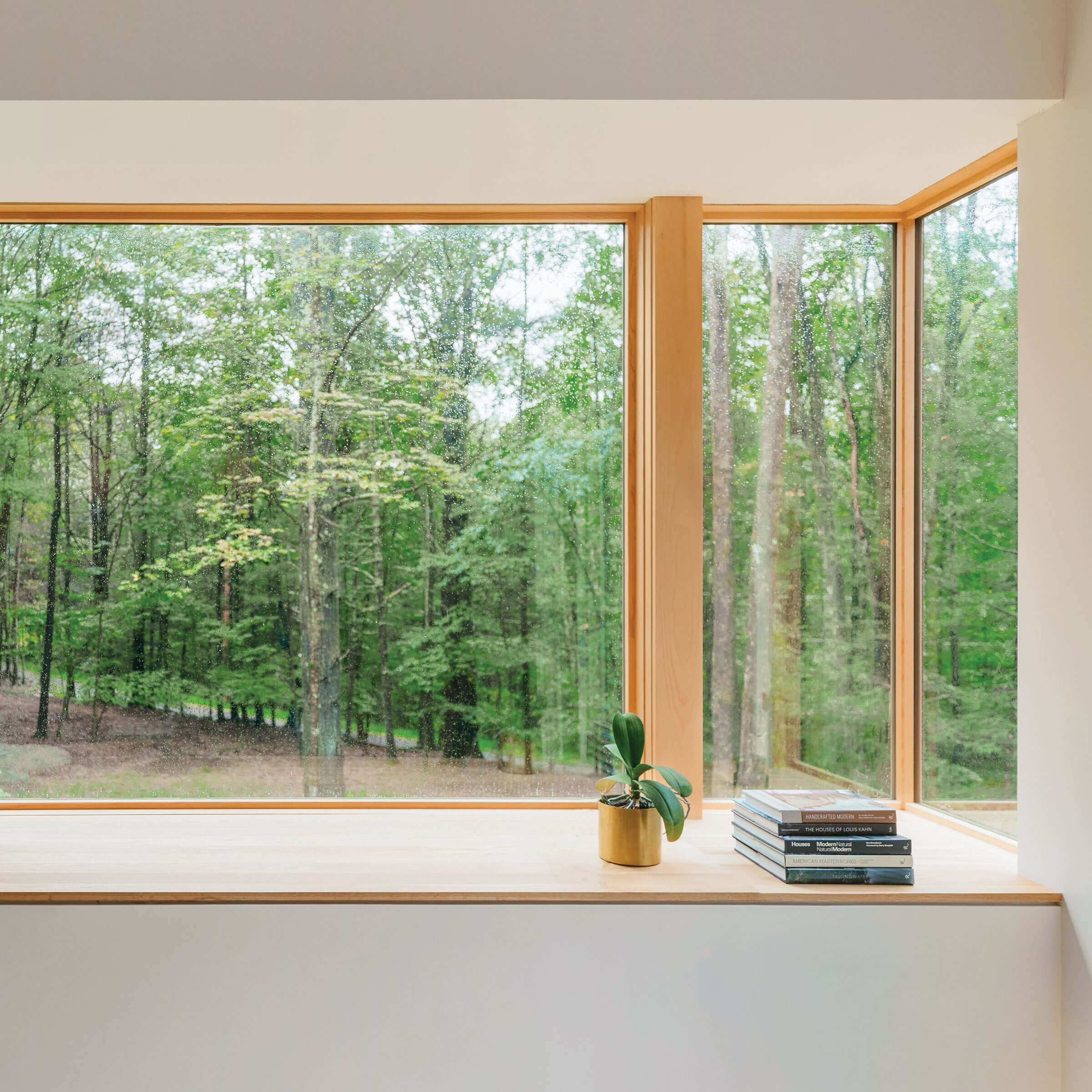 View Of Trees Through Signature Ultimate Corner Narrow Frame Window