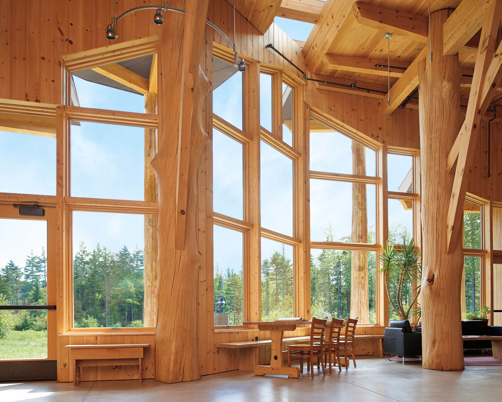 Large Room With Ultimate Specialty Shape Windows